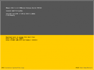 After the reboot this will be the default ESXi screen